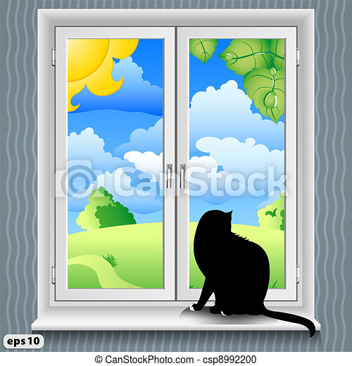 window and cat summer - csp8992200