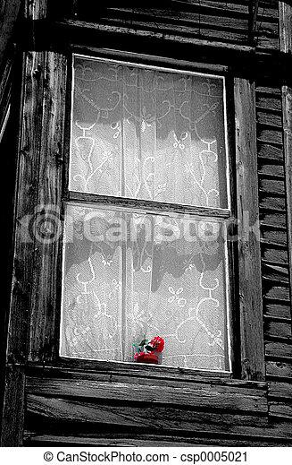 Window and flowers - csp0005021