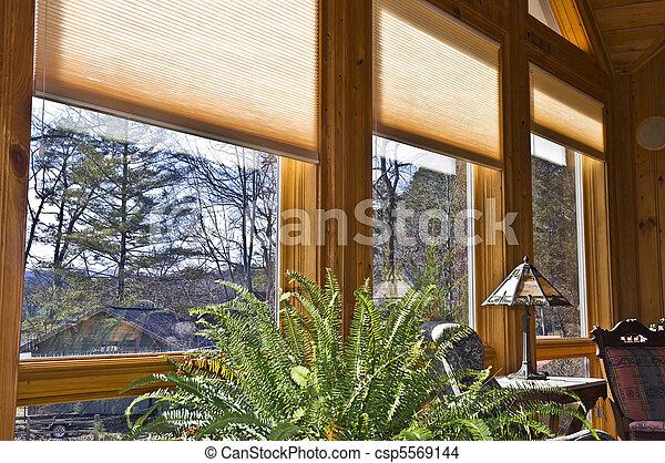 Window Blinds - csp5569144