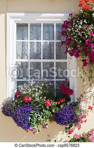 Window Box and Hanging-Basket - csp9576823