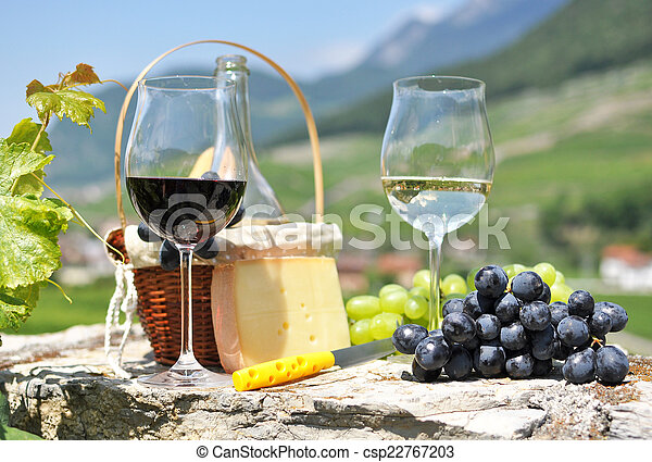 Wine and grapes - csp22767203