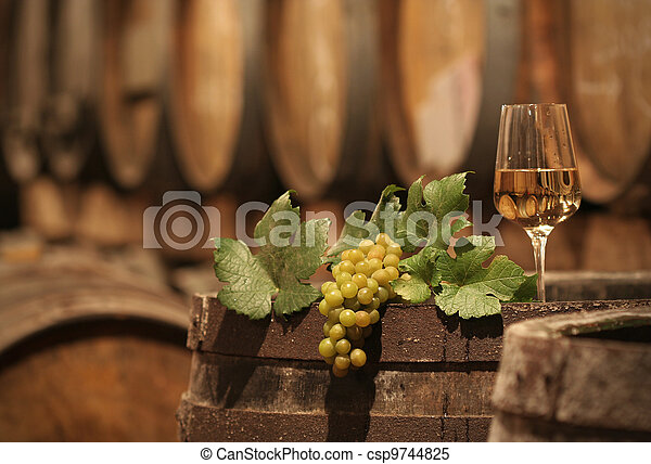 Wine Grapes in a Wine Cellar - csp9744825