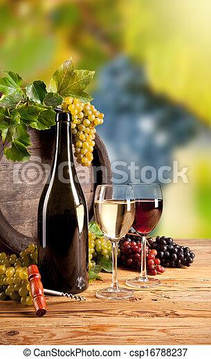 Wine in vineyard - csp16788237