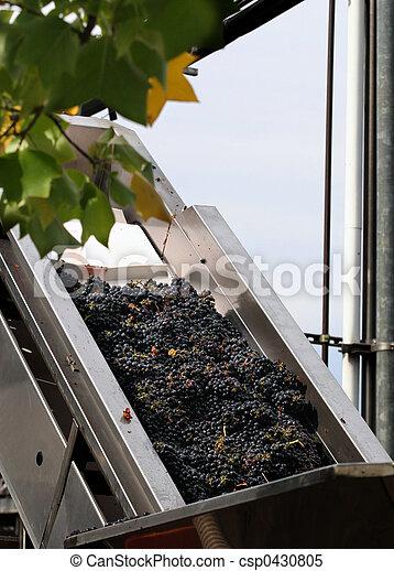Wine making process - csp0430805