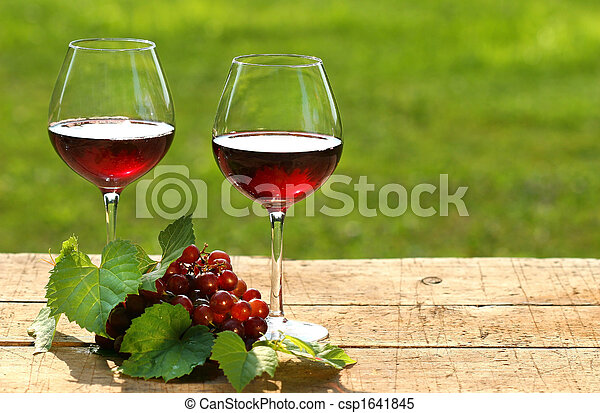 Wine on a summer day - csp1641845