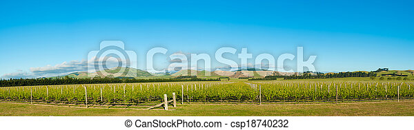 Winery of New Zealand - csp18740232