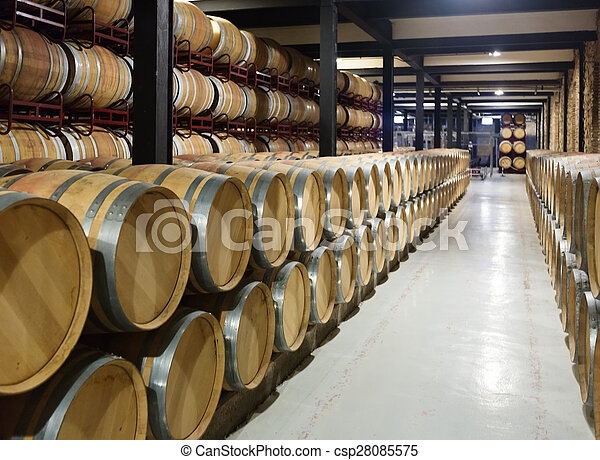 winery  with   wooden barrels  - csp28085575