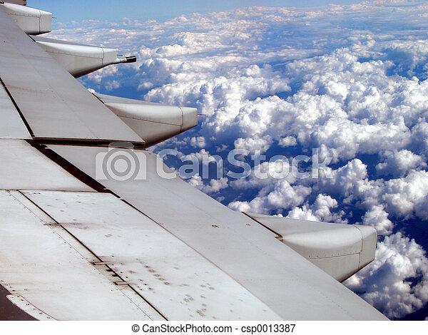 Wing - csp0013387