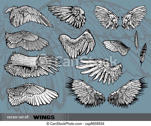 Wings - csp8658934