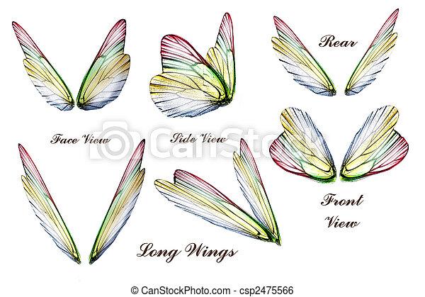 Wings - csp2475566