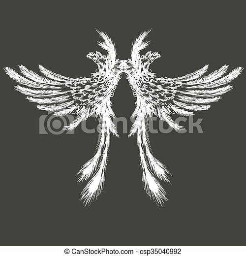 Wings vector illustration - csp35040992