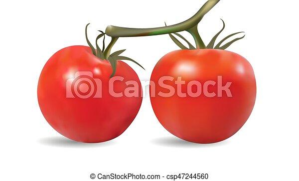 winne pomidory - csp47244560