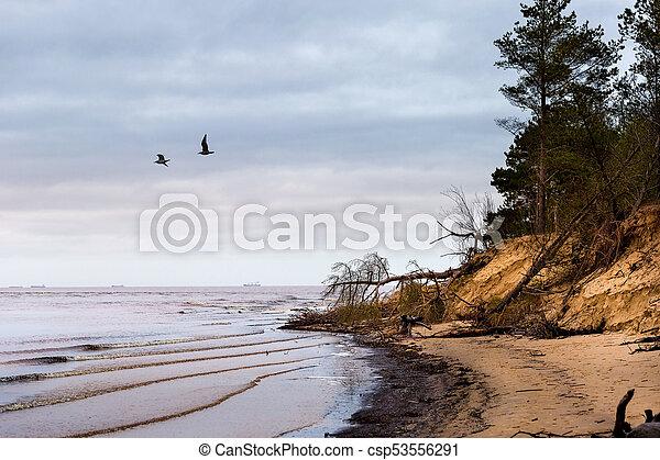 Winter at Baltic Sea in Riga - csp53556291