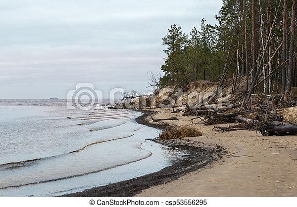 Winter at Baltic Sea in Riga - csp53556295