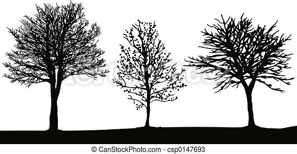 winter- bäume - csp0147693