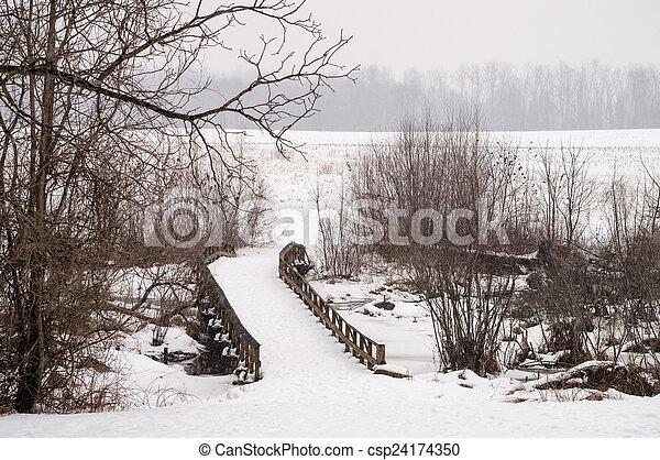 Winter Bridge - csp24174350