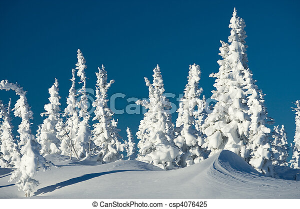 Winter day - csp4076425
