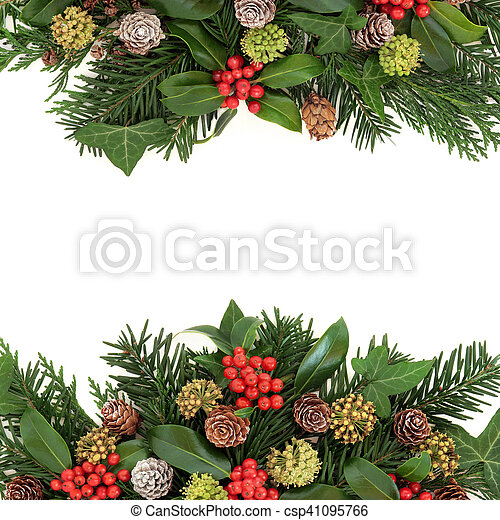 Christmas Greenery.Winter Greenery And Holly Border