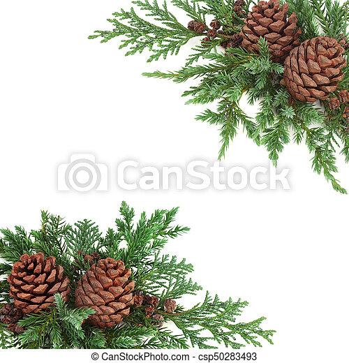 Christmas Greenery.Winter Greenery Border