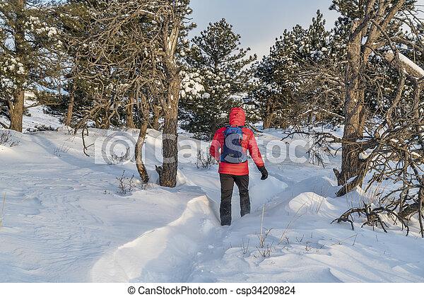 winter hiking in Colorado - csp34209824