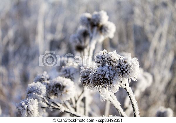 Winter in Belarus - csp33492331