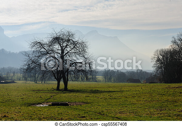Winter in the Savoy Area in Southern France - csp55567408