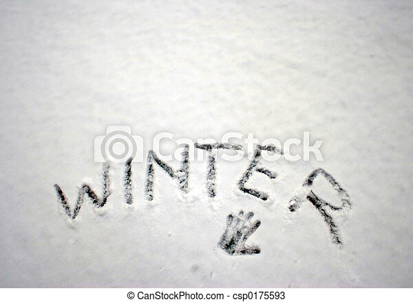 Winter in the snow - csp0175593
