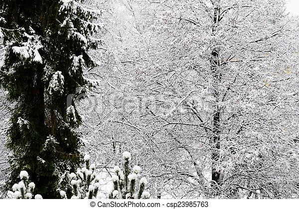 Winter in town - csp23985763