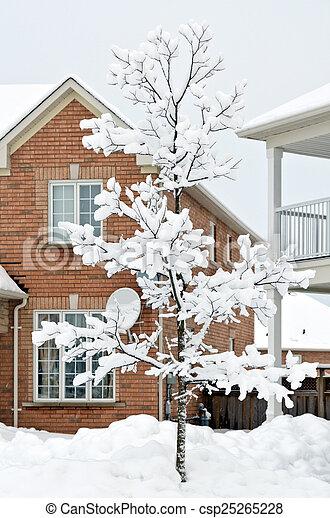 Winter in town - csp25265228