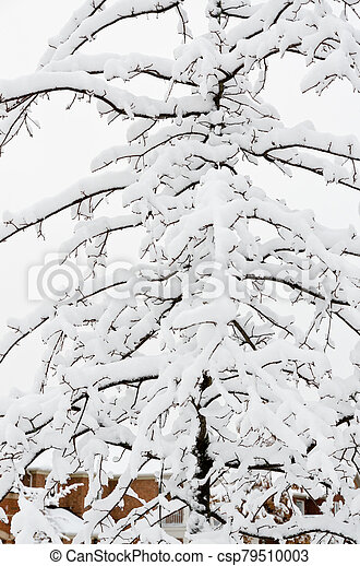 Winter in town - csp79510003