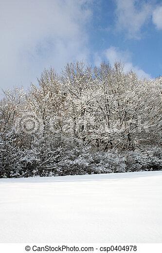 winter-landscape - csp0404978