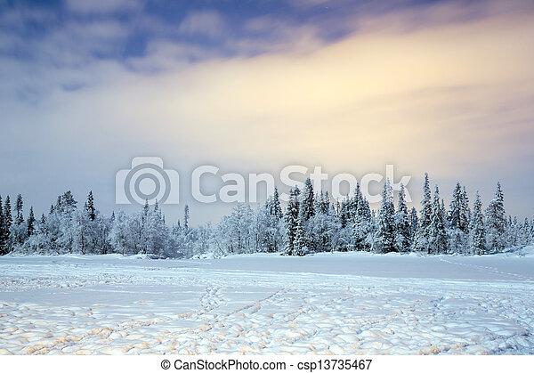 Winter landscape at night - csp13735467