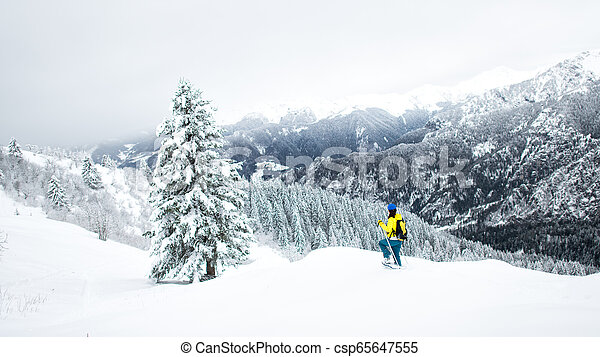 Winter landscape in a solitary snowshoeing on the Alps - csp65647555