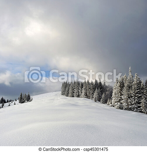 Winter landscape in the Carpathian mountains - csp45301475