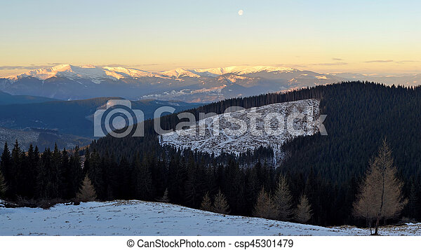 Winter landscape in the Carpathian mountains - csp45301479