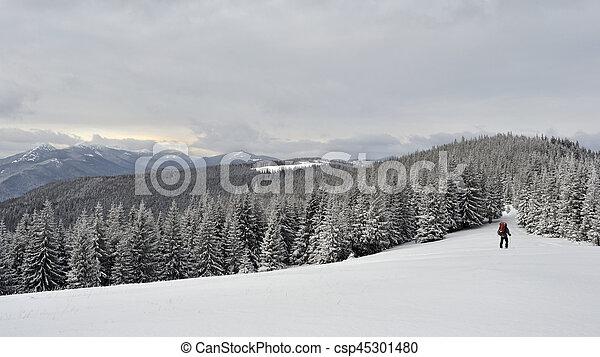 Winter landscape in the Carpathian mountains - csp45301480