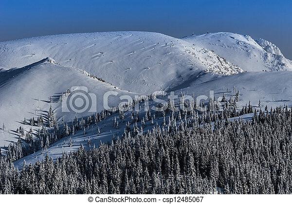 Winter landscape in the Carpathian mountains - csp12485067