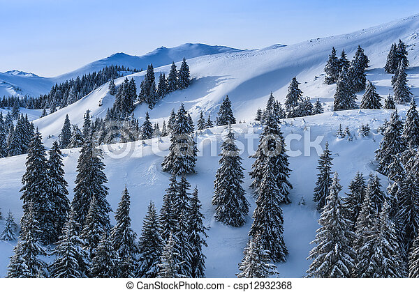 winter landscape in the Carpathian Mountains - csp12932368