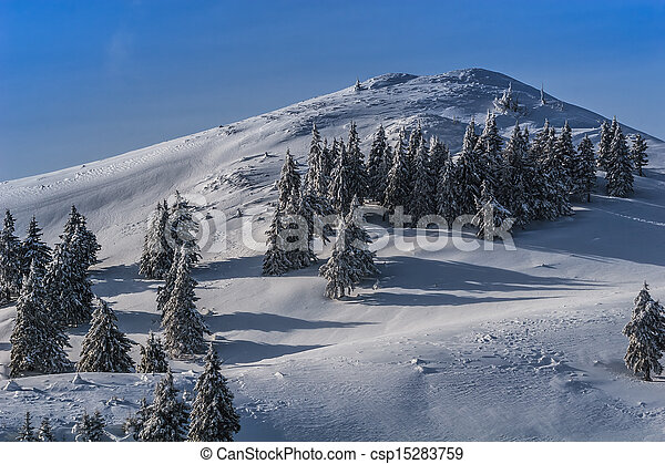 winter landscape in the Carpathian Mountains - csp15283759