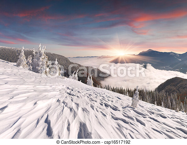 winter landscape in the Carpathian mountains - csp16517192