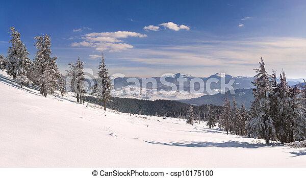 winter landscape in the Carpathian mountains - csp10175100