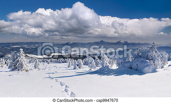 winter landscape in the Carpathian mountains - csp9947670