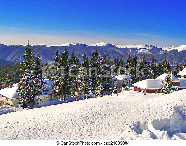 Winter landscape in the forest - csp24633084