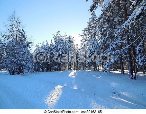 Winter landscape in the Karelia - csp32162165