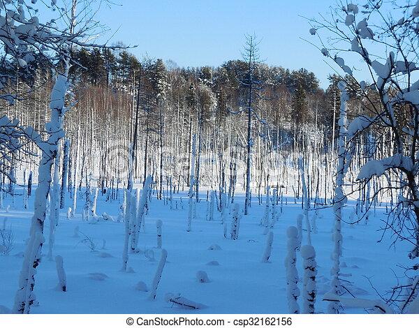 Winter landscape in the Karelia - csp32162156