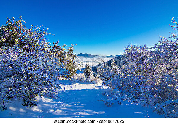 Winter landscape in the morning. - csp40817625