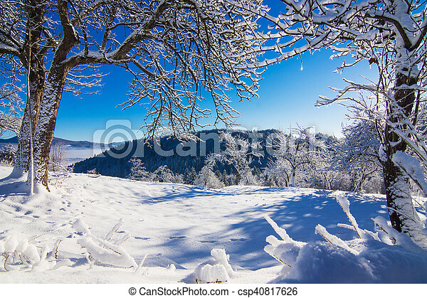 Winter landscape in the morning. - csp40817626