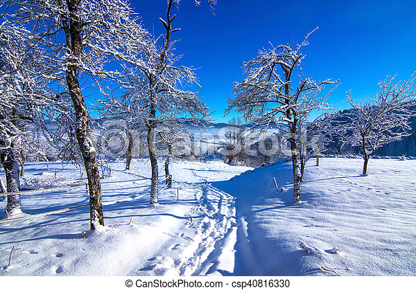 Winter landscape in the morning. - csp40816330