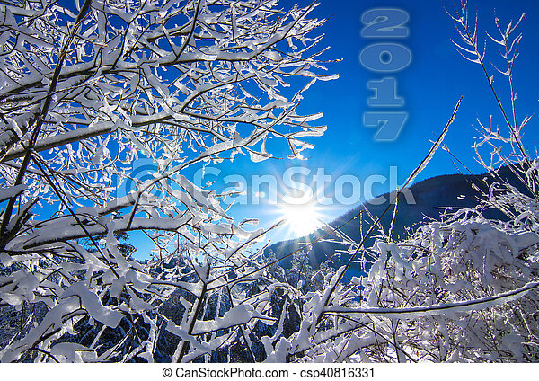 Winter landscape in the morning. - csp40816331