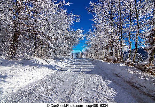 Winter landscape in the morning. - csp40816334